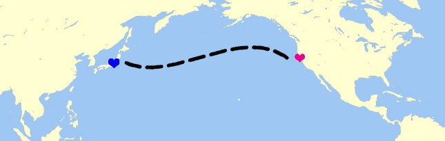 A yellow and blue map of the Pacific Ocean, Asia, and North America with one pink heart over California, a blue heart over Japan, and a dashed line connecting the two.