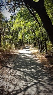 2018-09-19_Lower Bidwell Park 5